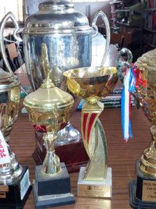 Gatoto Student Trophies